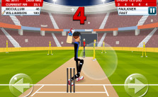 Stick-Cricket-2